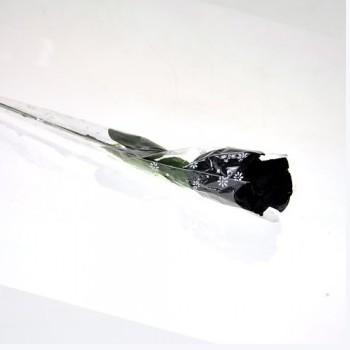 【情趣内衣】STACEY史黛丝 黑色玫瑰花性感内裤创意个性可爱礼物8928